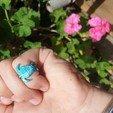 Télécharger fichier impression 3D gratuit Anneau des tortues de mer, Renee_Taylor