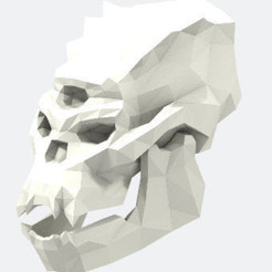 Download free 3D printer designs Skull of Troll, stanx974