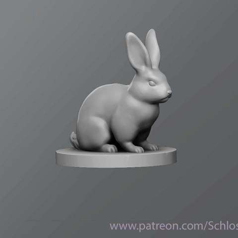 d1e85d8dc23a474528c97acf4bf52726_display_large.jpg Download free STL file Rabbit • 3D printer object, schlossbauer
