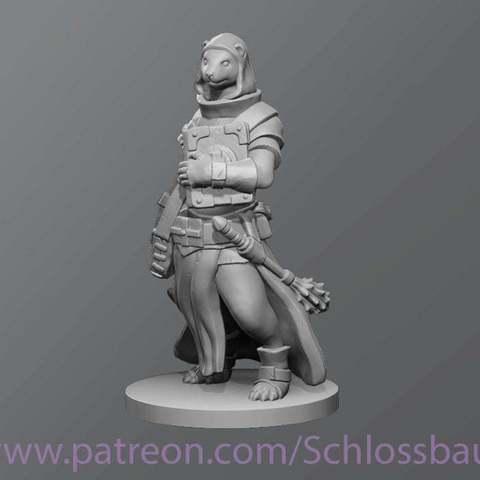 Download free 3D model Ferret cleric, schlossbauer
