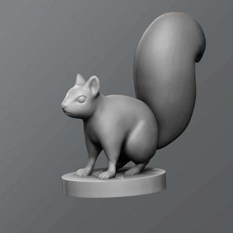 Download free STL Squirrel, schlossbauer