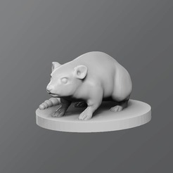 Download free STL Rat, schlossbauer