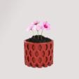 Descargar archivos 3D Maceta para flores y plantas de naturaleza para decoración de casa como adorno natural muy bonito, Quality_Art_Factory