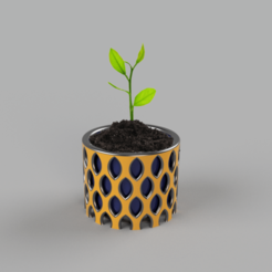 Foto 1 .png Download STL file Flower and nature plant pot for home decoration as a very nice natural decoration • 3D print model, OZONE