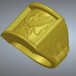 Télécharger fichier impression 3D Une chevalière griffon rg01 pour 3d-print et cnc, Dzusto