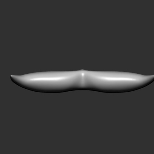 Whale Tail_1_Z_3.jpg Download free OBJ file Whale Tail 1 • Model to 3D print, h3ydari96