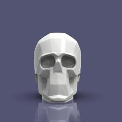 untitled.134.181.jpg Télécharger fichier OBJ Avions du crâne • Design imprimable en 3D, h3ydari96