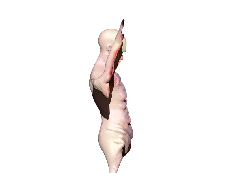 Pale (23).png Download OBJ file Pale man • Template to 3D print, h3ydari96