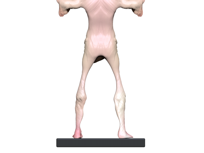 Pale (3).png Download OBJ file Pale man • Template to 3D print, h3ydari96