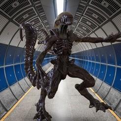 untitled.184.jpg Download OBJ file alien II and resurrection • 3D printing design, jctesoro