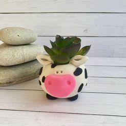 Télécharger fichier OBJ gratuit vache matera • Modèle pour imprimante 3D, CRSTUDIO8305
