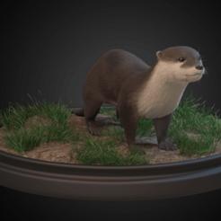 Download free STL files European Otter, Rascof