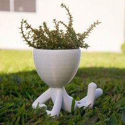 Download STL files flowerpot robert plant triple, Pepi123