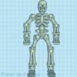 esqueleto.png Télécharger fichier STL gratuit ossature • Design imprimable en 3D, brayanrosas94