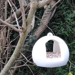 20201202_111823.jpg Télécharger fichier STL gratuit Mangoire à oiseaux • Modèle à imprimer en 3D, olivhood