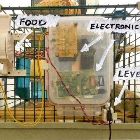 Télécharger modèle 3D gratuit Chambre de conditionnement de l'opérateur, Obenottr3D