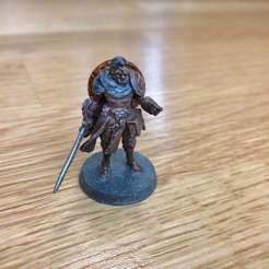 Download free 3D printing files Gloomhaven Bandit Commander, Gronis