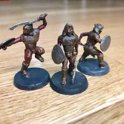 Download free 3D printing designs Gloomhaven Bandit Guard, Gronis