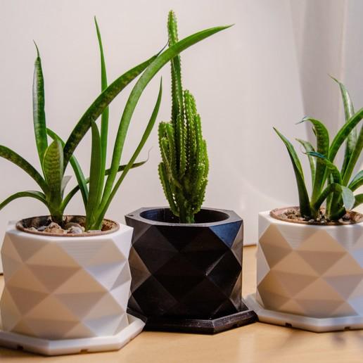 Download STL files PolyPot – Plant Pot and Tray, mikedelcastillo