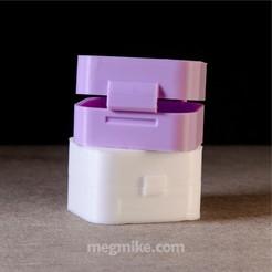 Descargar modelo 3D gratis Contenedor de pecho personalizable para impresión en el lugar, mikedelcastillo
