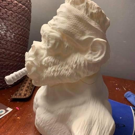 70120602_10218433891792935_6262827496056553472_o.jpg Download free STL file Gang Gorilla Free 3D print model • 3D printer design, DFB93