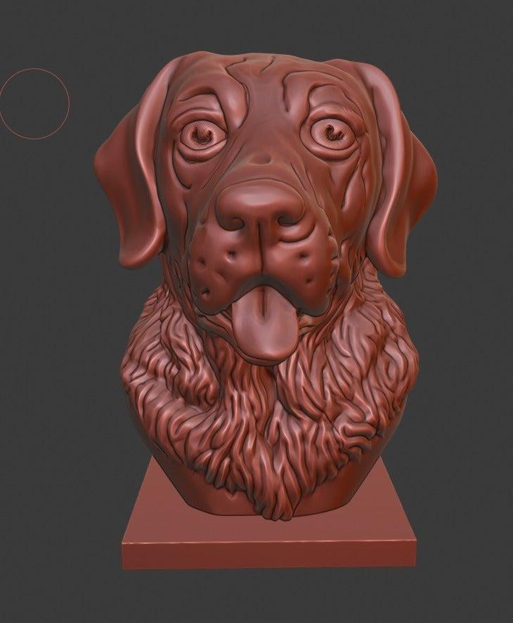 dfa211ba128cac607f30f55778e70a6a_display_large.jpg Download free STL file Labrador Retriever bust (Dog head) • 3D printable object, Boris3dStudio
