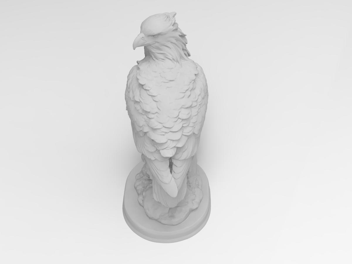 228.259.png Télécharger fichier STL gratuit Faucon • Objet pour impression 3D, Boris3dStudio