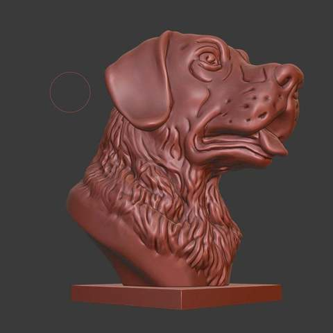 Download free STL file Labrador Retriever bust (Dog head) • 3D printable object, Boris3dStudio