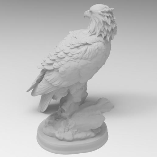 228.258.png Télécharger fichier STL gratuit Faucon • Objet pour impression 3D, Boris3dStudio