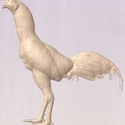 chicken.PNG Télécharger fichier STL Coq de gibier de gibier de gibier de gibier à plumes de poulet asil cnc relief • Objet imprimable en 3D, djsandwich1