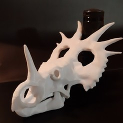 20200929_231844.jpg Download STL file Styracosaurus dinosaur skull • Model to 3D print, Lucas_Kranz