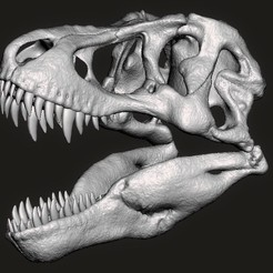 t-rex skull.jpg Download STL file T rex skull • 3D printable object, Lucas_Kranz