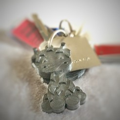 Download free 3D printer files Keychain giographer, emilemoreau