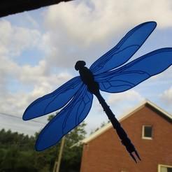 IMG_1163.JPG Download free STL file See through dragonfly • Model to 3D print, Creatom