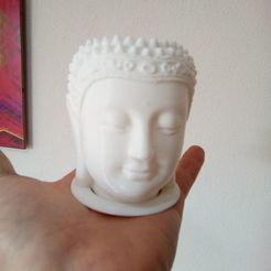 buda cabeza.jpeg Télécharger fichier STL bouddha à tête de cactus en pot • Design imprimable en 3D, mdscheffer2