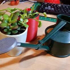 Download free STL file Haws small watering can replacement head, telekineticyeti