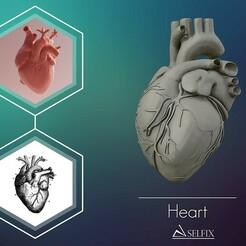 01.jpg Download OBJ file Heart sculpture Ready to Print 3D print model • 3D printer model, selfix