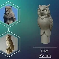 01.jpg Télécharger fichier OBJ Sculpture OWL prête à être imprimée en 3D • Design pour imprimante 3D, selfix