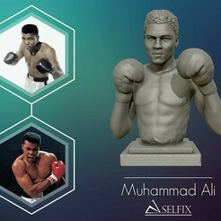 01.jpg Download OBJ file Muhammad Ali 3D model sculpture • 3D printable model, selfix