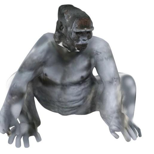 GORILLA1.jpg Download OBJ file Gorilla lamp • 3D printing template, swivaller