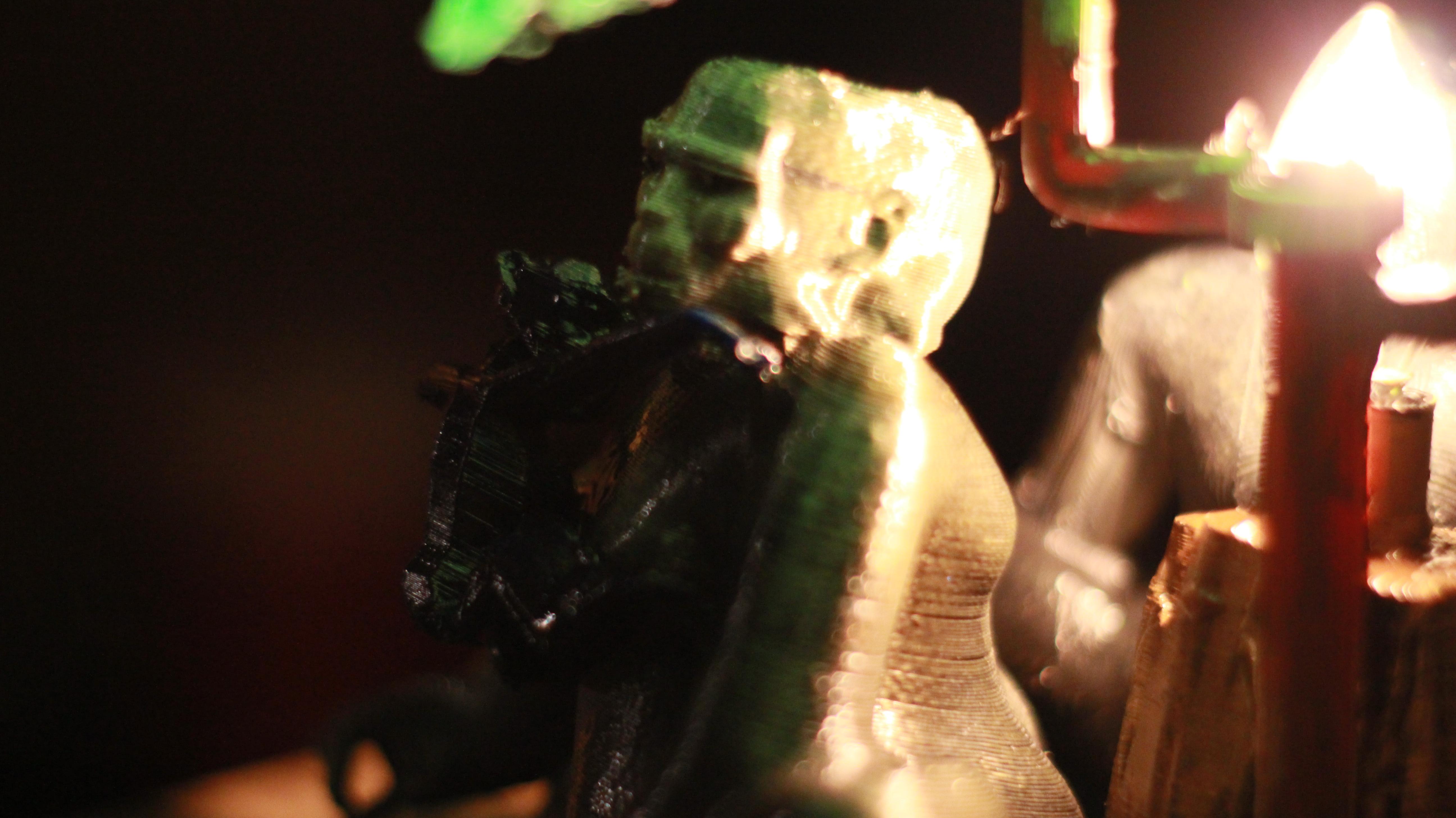 IMG_4058.JPG Download OBJ file Gorilla lamp • 3D printing template, swivaller