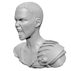 Download 3D printing designs Charlize Theron Furiosa from Mad Max: Fury Road, mochawhale