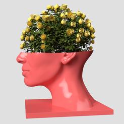 Download 3D printer designs Head Woman Vase , AleexStudios_2019