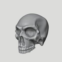 Bildschirmfoto_2020-05-16_um_16.17.40.png Download free STL file Human Skull - printable • 3D print template, Sumbu