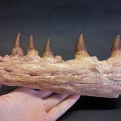 20200325_174800_HDR.jpg Download STL file Mosasaur Jaw • 3D print design, LordTrilobite