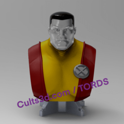 thumbnail_image0.png Download STL file Bust Colossus X-men (different dimensions). • 3D printable template, TordS