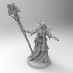 Imprimir en 3D gratis Apóstol del liquido oscuro, Mazer