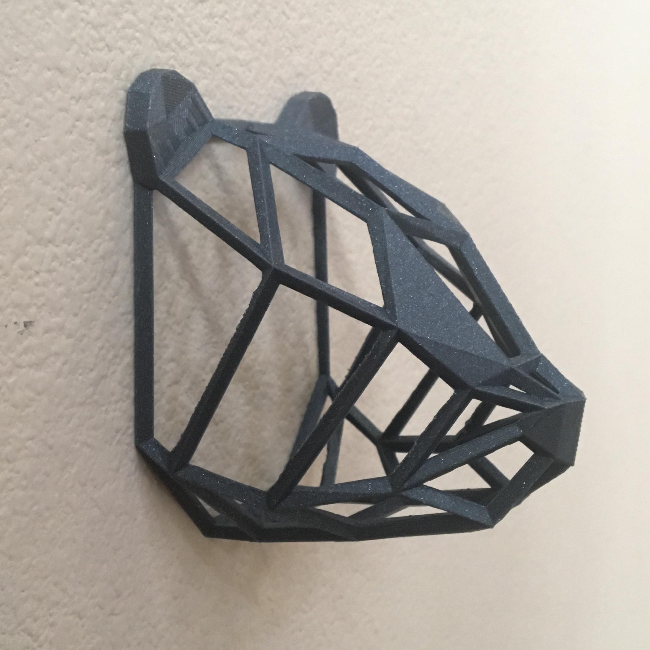 IMG_8971.JPG Download free STL file Wire Frame Panda Head • 3D printable design, caitlin_le