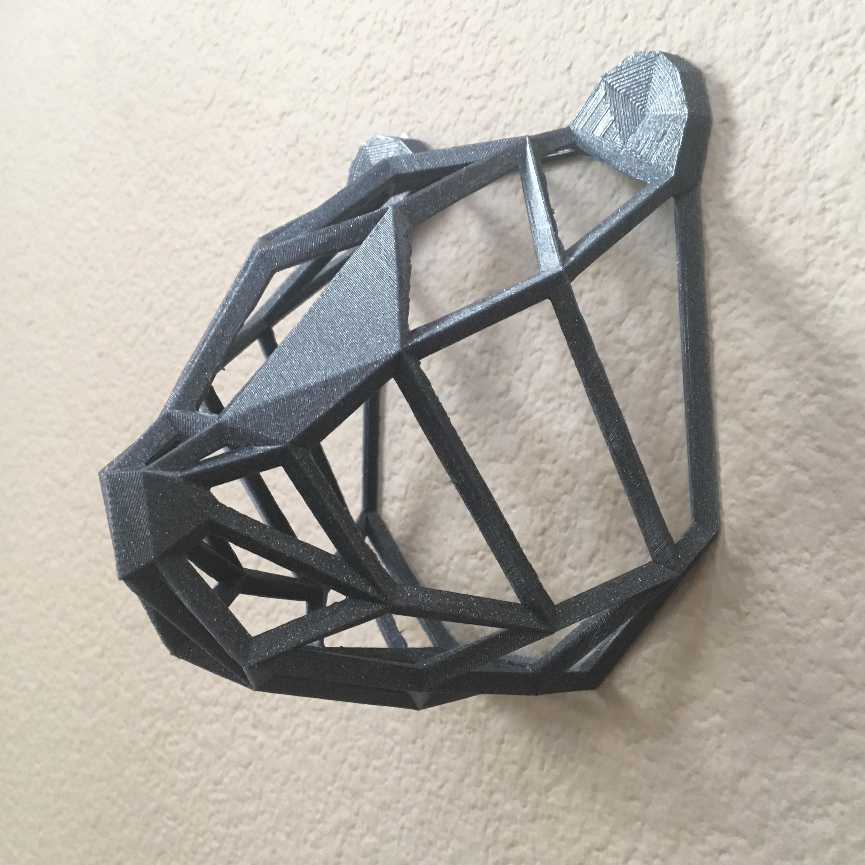 IMG_8973.JPG Download free STL file Wire Frame Panda Head • 3D printable design, caitlin_le