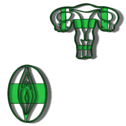 87062543_568253130443133_5755105328798629888_n.png Download STL file female marker cutter • 3D printing design, IDEAS3D